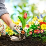 how gardening reduces stress
