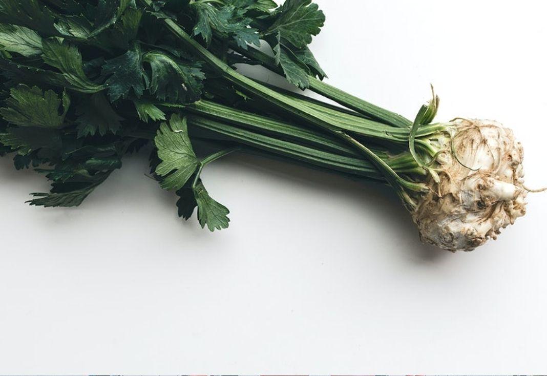 health benefits of celery